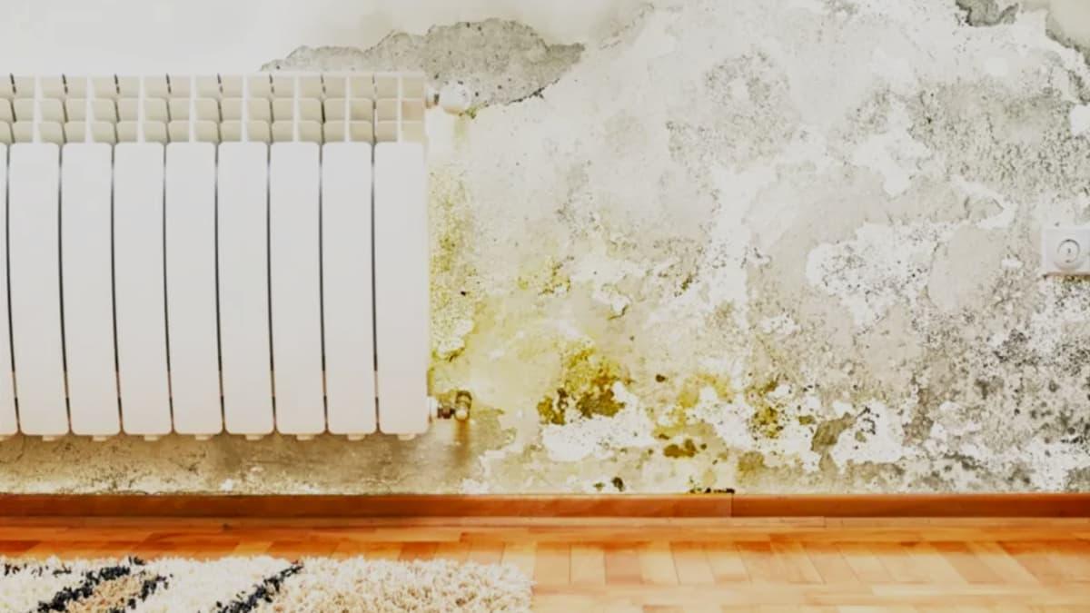 como-quitar-manchas-amarillas-humedad-en-la-pared
